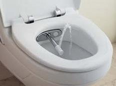 Self Cleaning Toilet