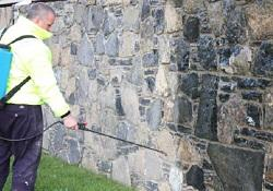 Masonry Cleaner